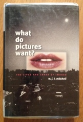 What_Pictures_Want